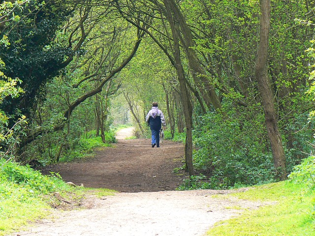 Footpath on the eastern bank, Keynes country park - geograph.org.uk - 766150