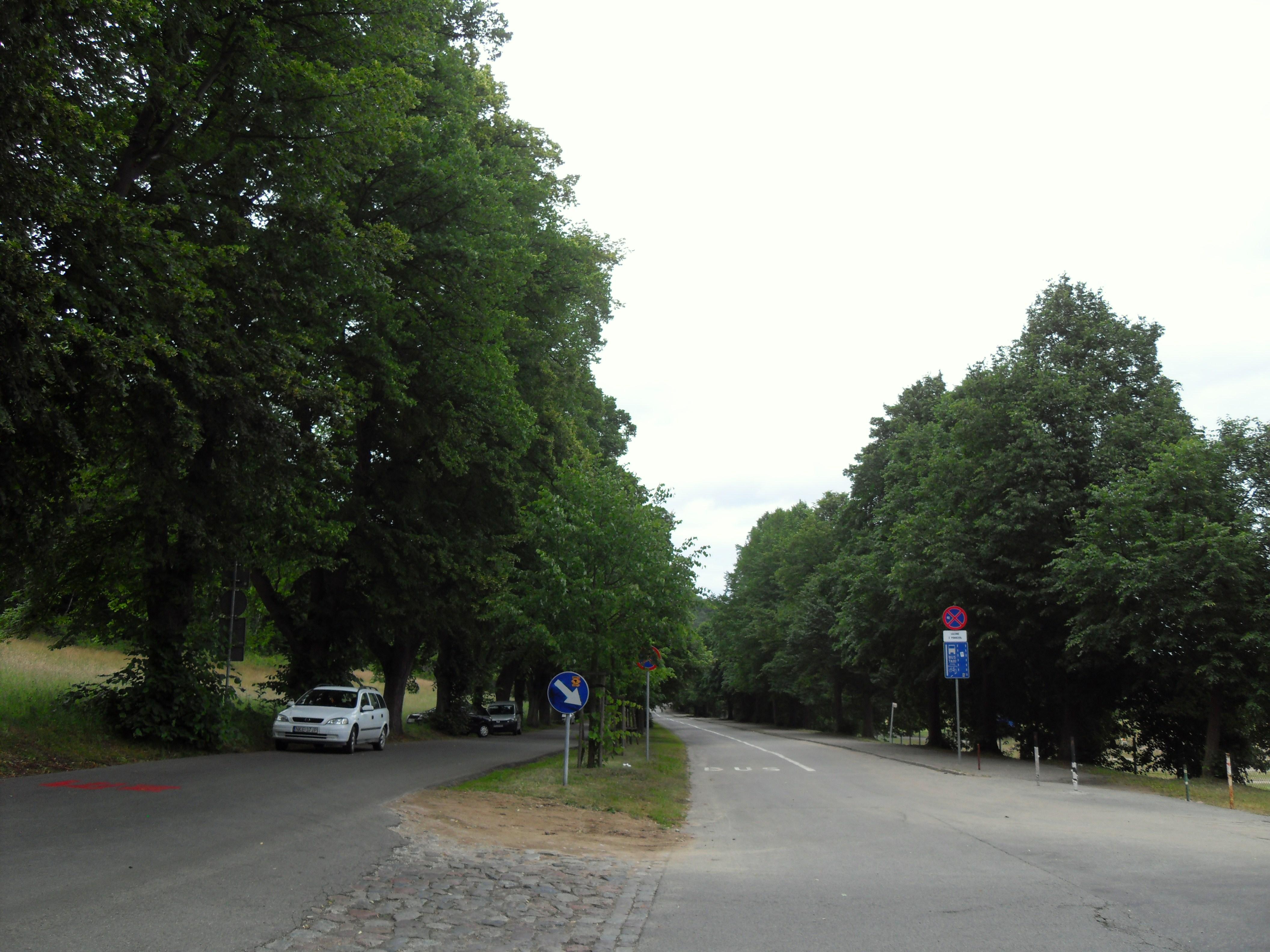 Gda%C5%84sk_Oliwa_ulica_Karwie%C5%84ska.JPG