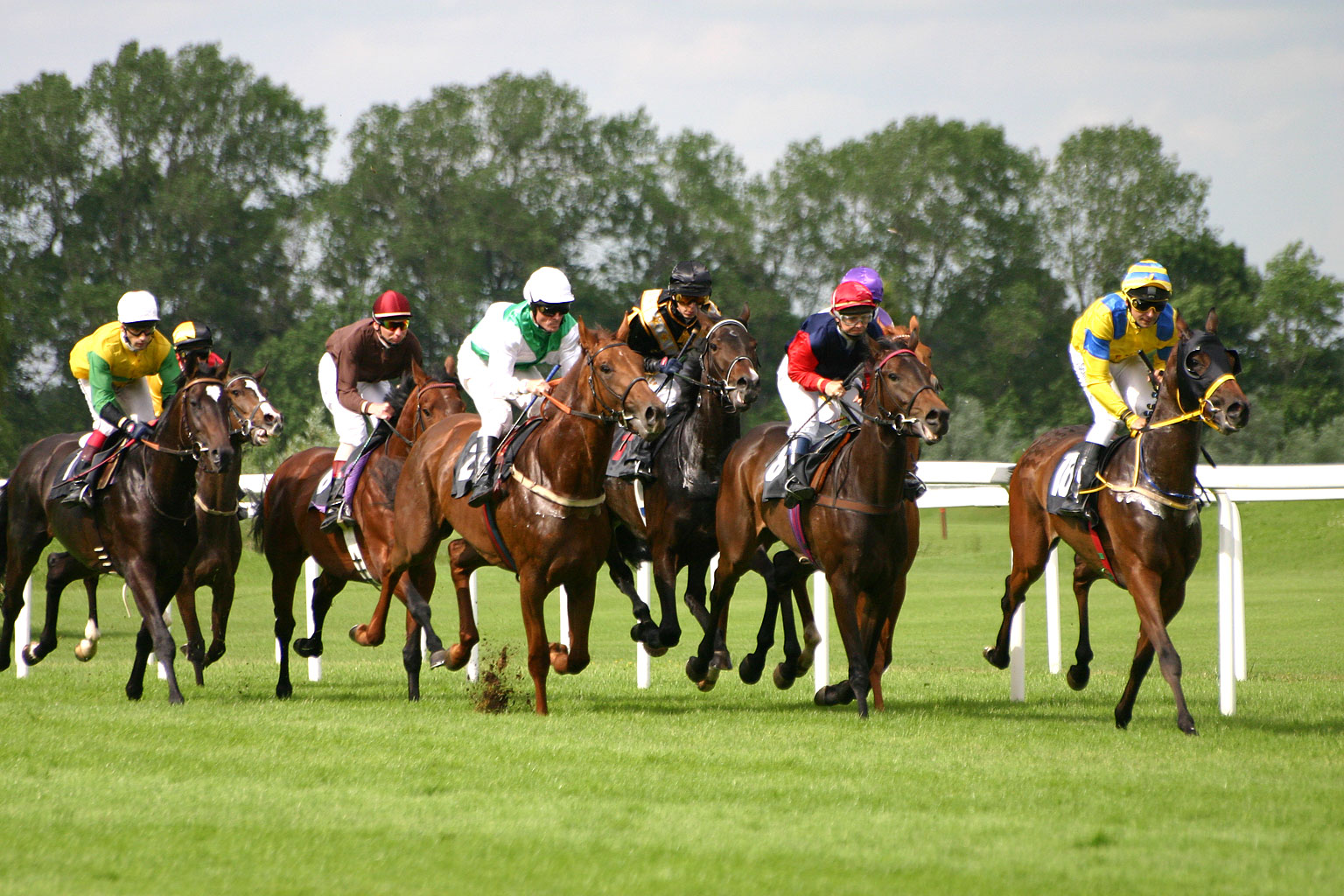 Understanding UK Horse Racing