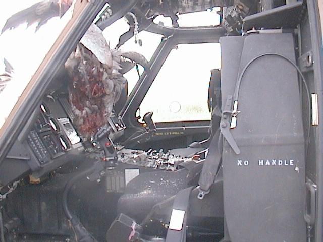 IAF_UH-60_after_birds_strike_inside.jpg