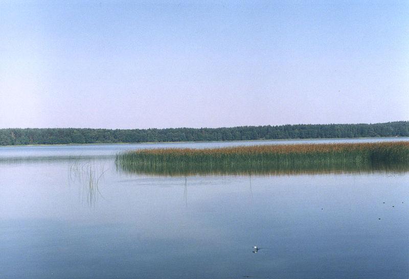 Wet Lake (Warmia-Masuria Voivodeship)