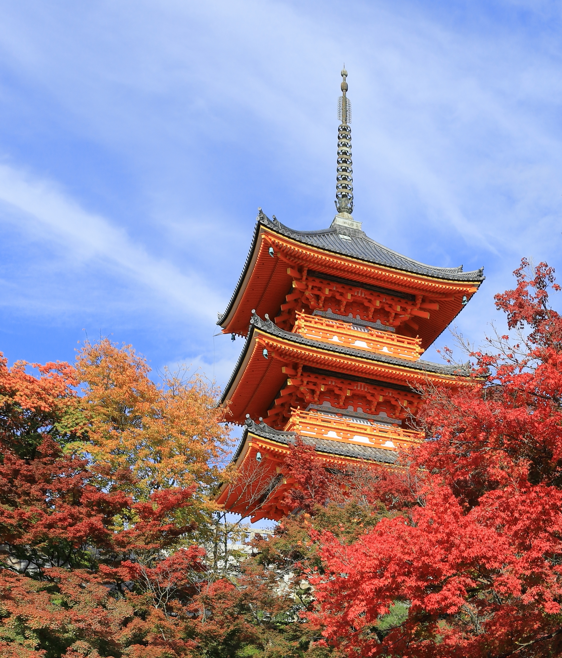 [Resim: Kiyomizu-dera%2C_Kyoto%2C_November_2016_-04.jpg]