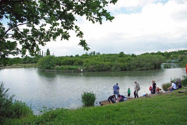 Langdon Lake - geograph.org.uk - 1375137