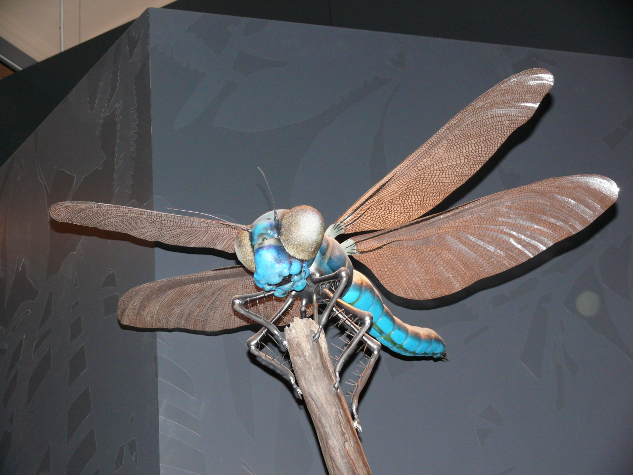 giant insects prehistoric - photo #14