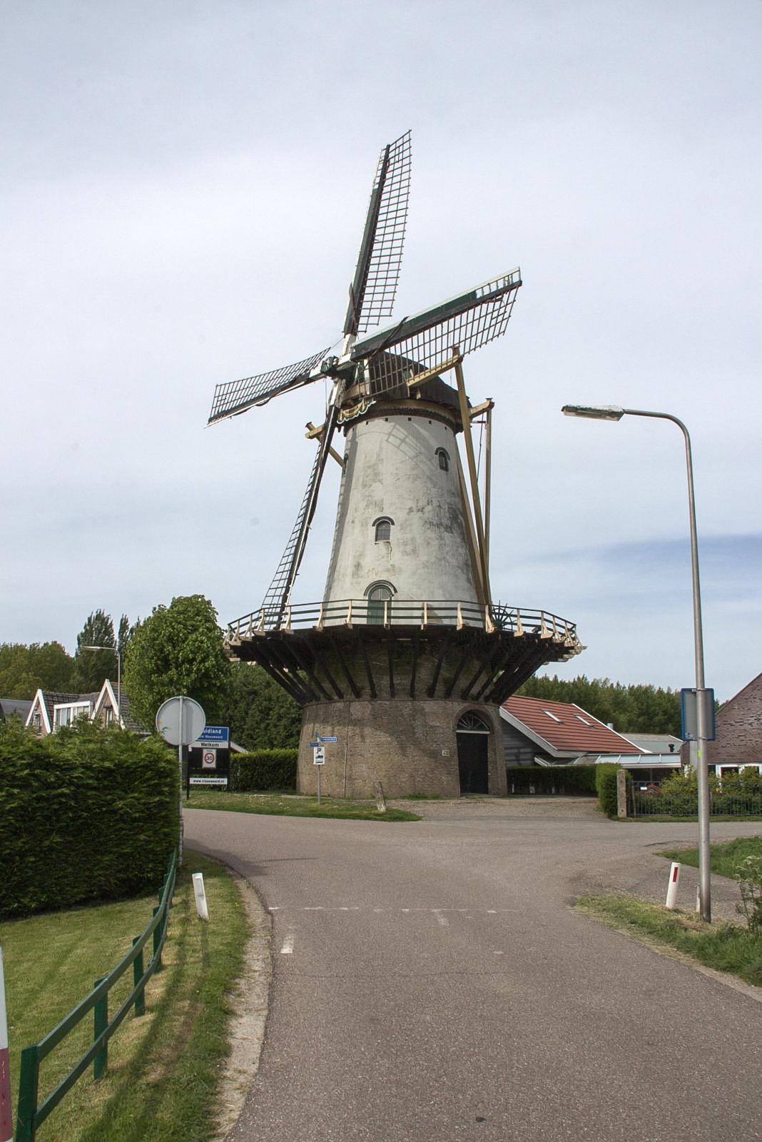 Mill of Zuidland Holland.jpg