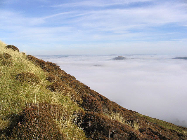 On Eildon Hill North - geograph.org.uk - 583479