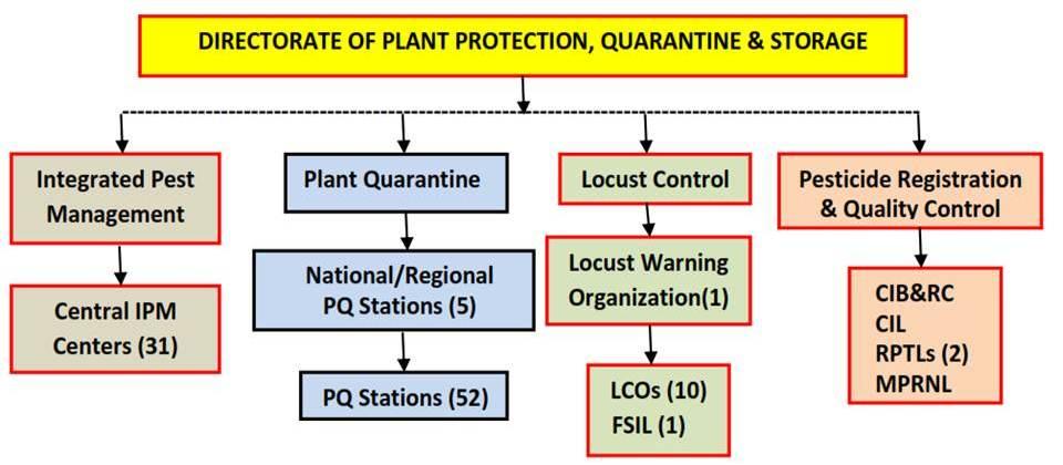 Distribution Center Organizational Chart: Organizational Chart Dte. of PPQ6S.jpg - Wikimedia Commons,Chart