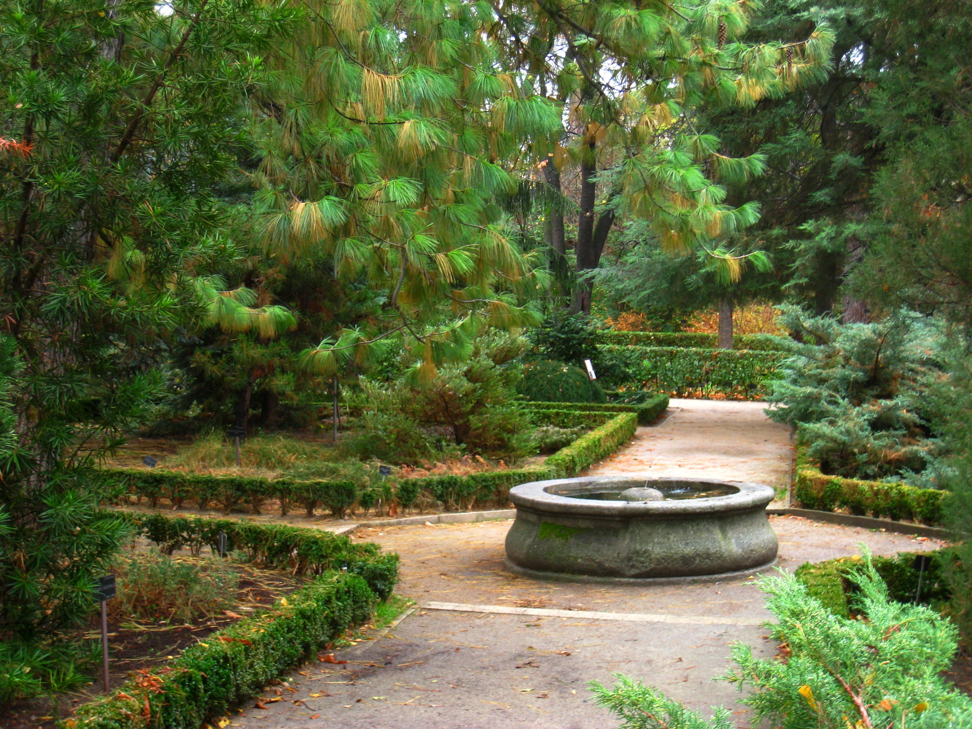 File Royal Botanical Garden Madrid View 07 Jpg