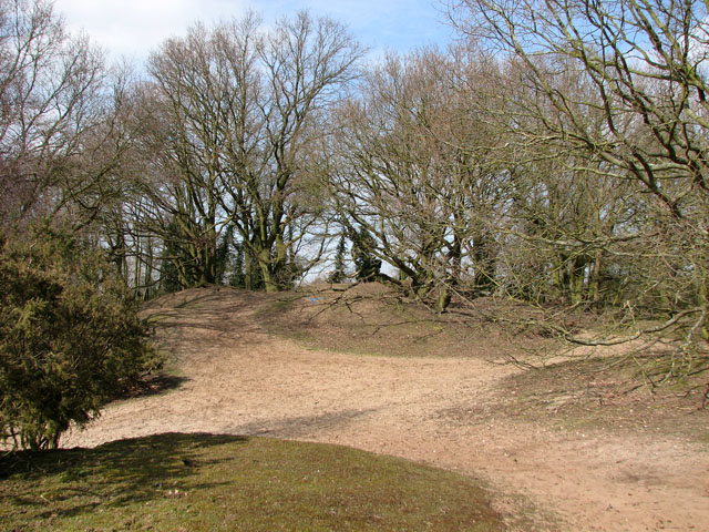 Sandy knolls on the northern edge of the Ling - geograph.org.uk - 1770277