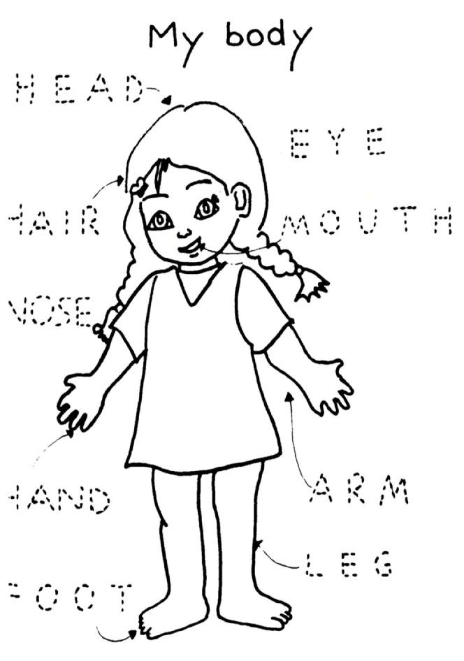 Préférence Body (scuola dell'infanzia) - Wikiversità OX89