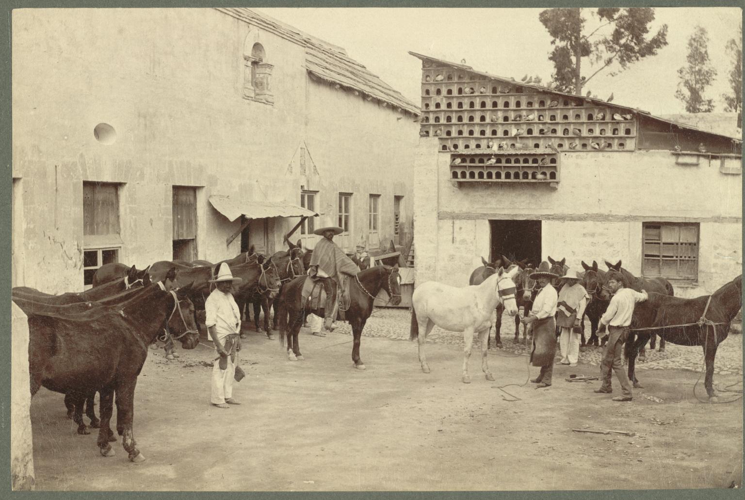 Hacienda De Mesilla Hotel Hell