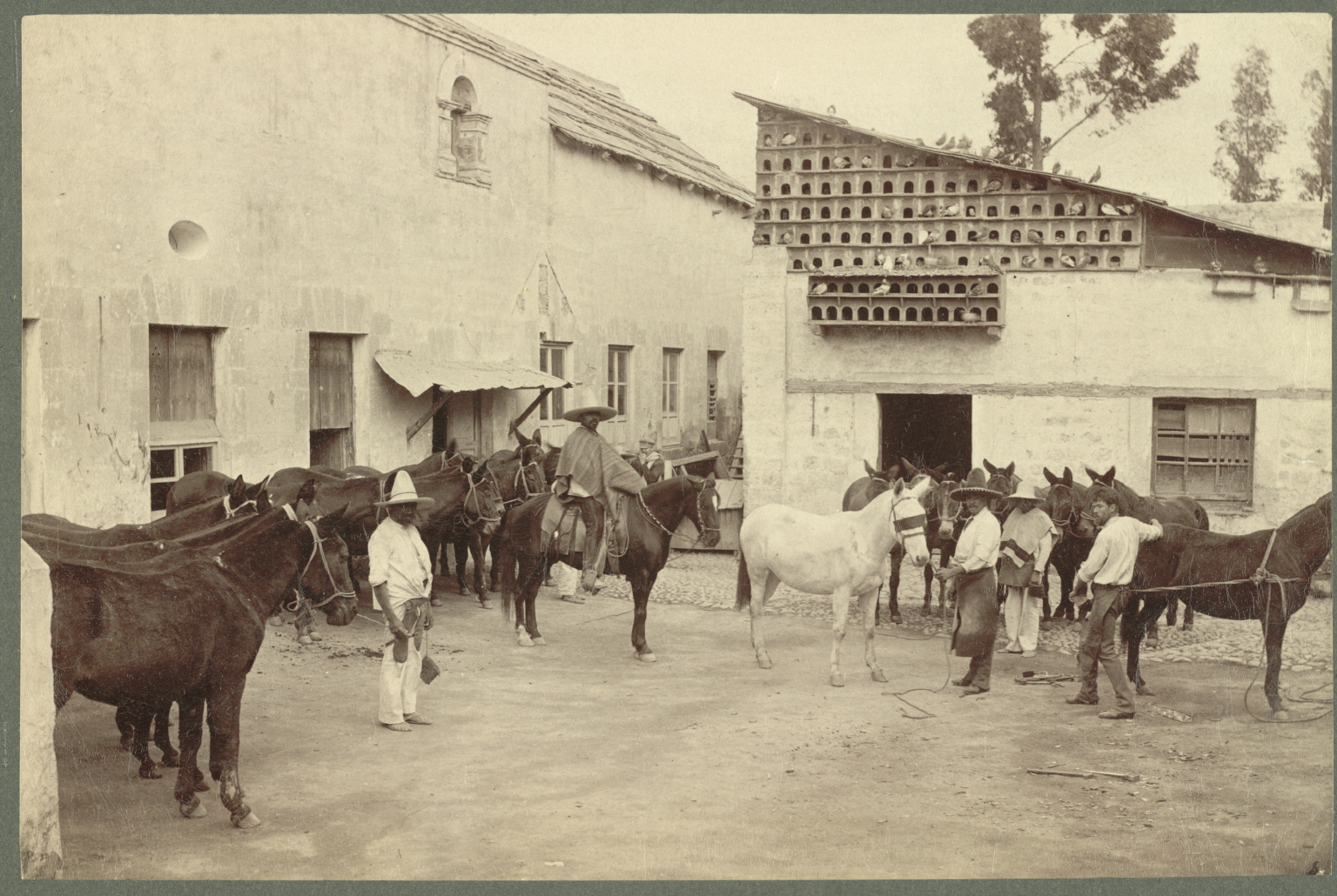 File:Shoeing the Mules (Mexican Village Scene).jpg - Wikimedia Commonsmexico village