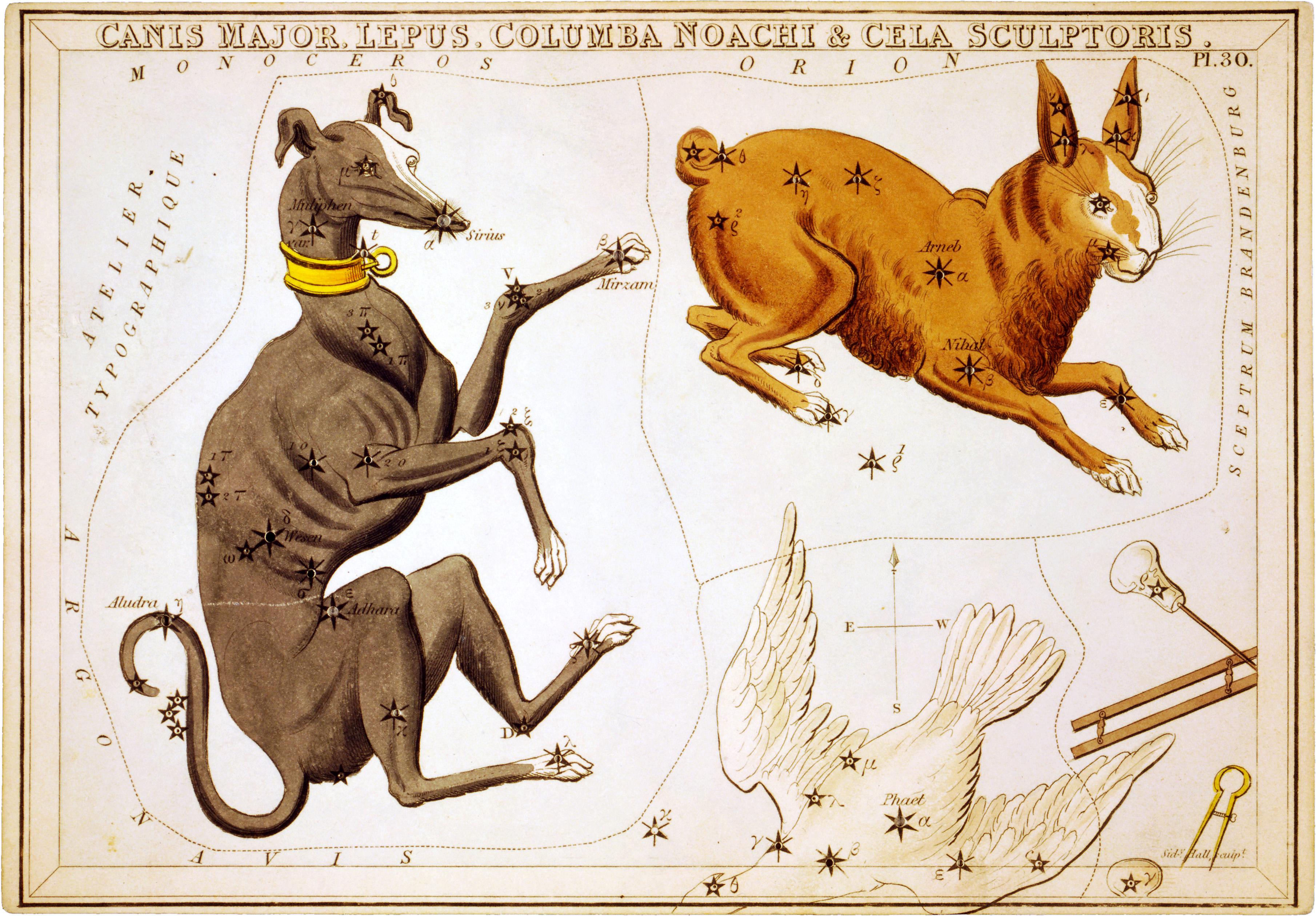 Greek Mythology Dog Names