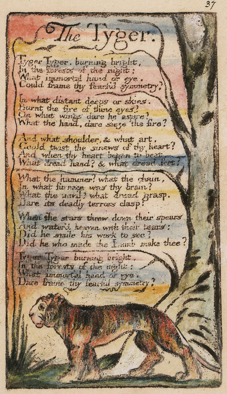 william blake tyger lamb essay Did he who made the lamb make thee tyger tyger burning brightwhat the anvil documents similar to essay the tyger-william blake the legacy of greece.