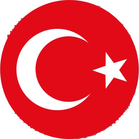 58742b620 Turkey national football team - Wikipedia