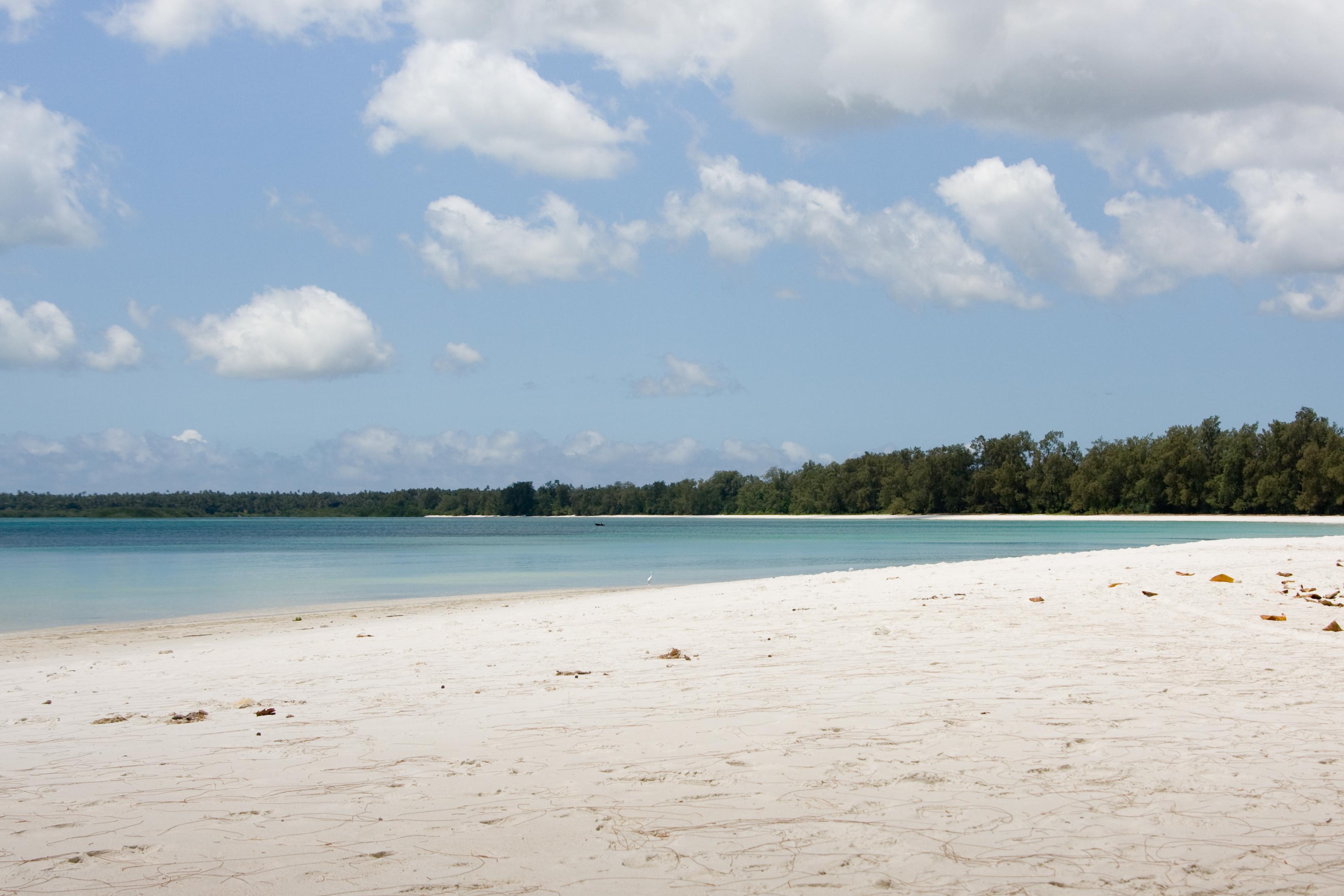 pemba island tanzania cosa vedere