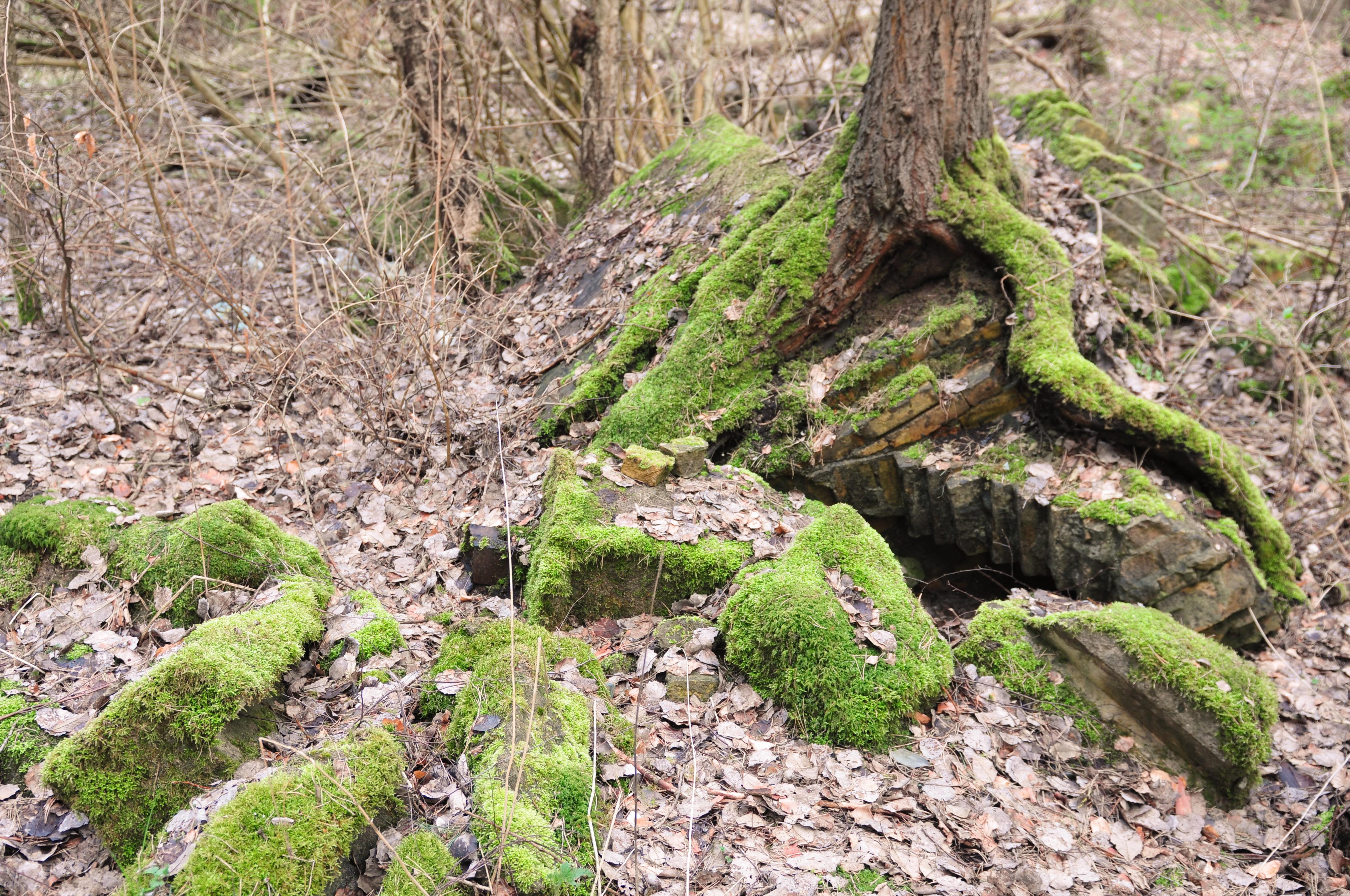 14-04-07-franzosenbunker-eberswalde-03.jpg