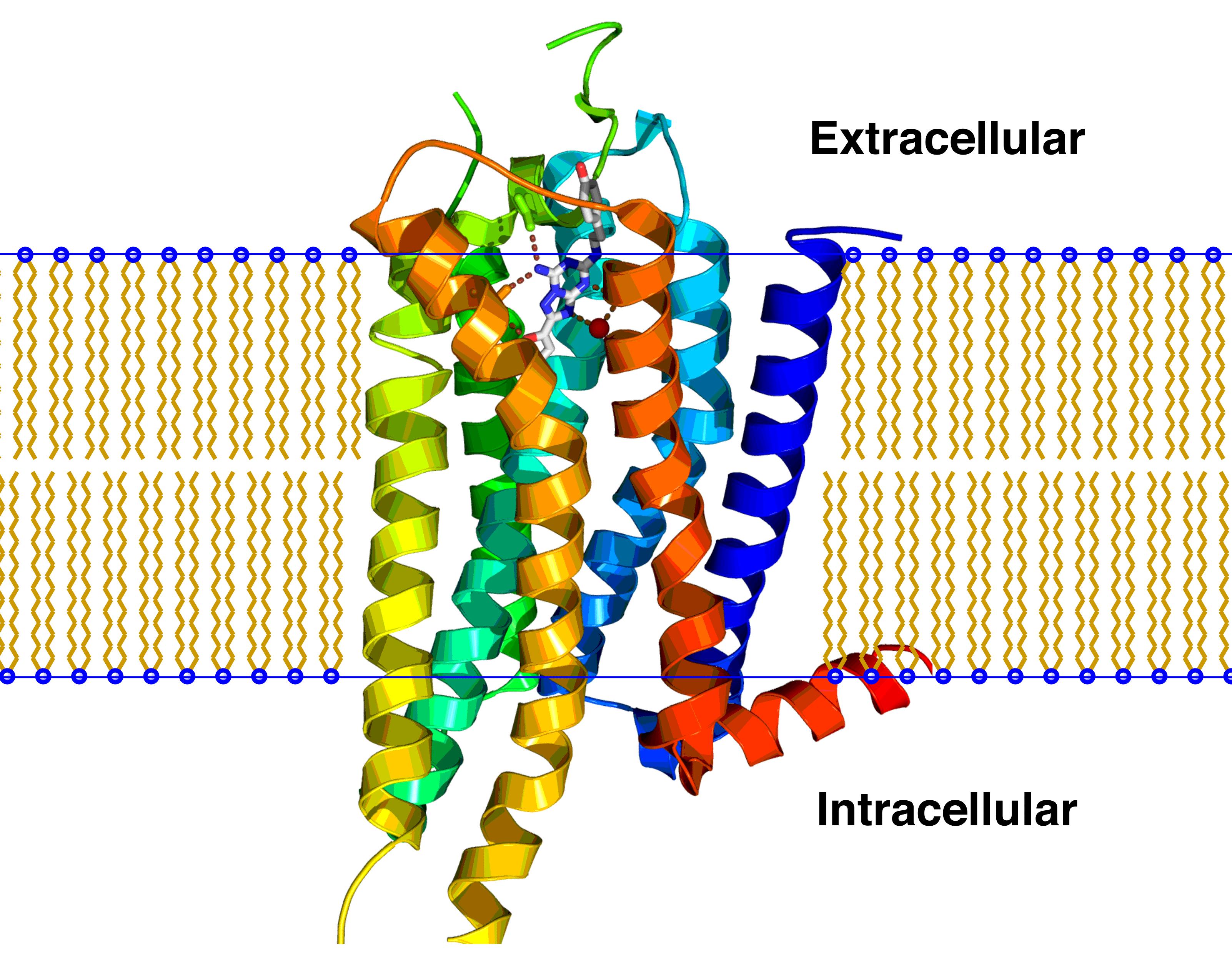 Receptor electric