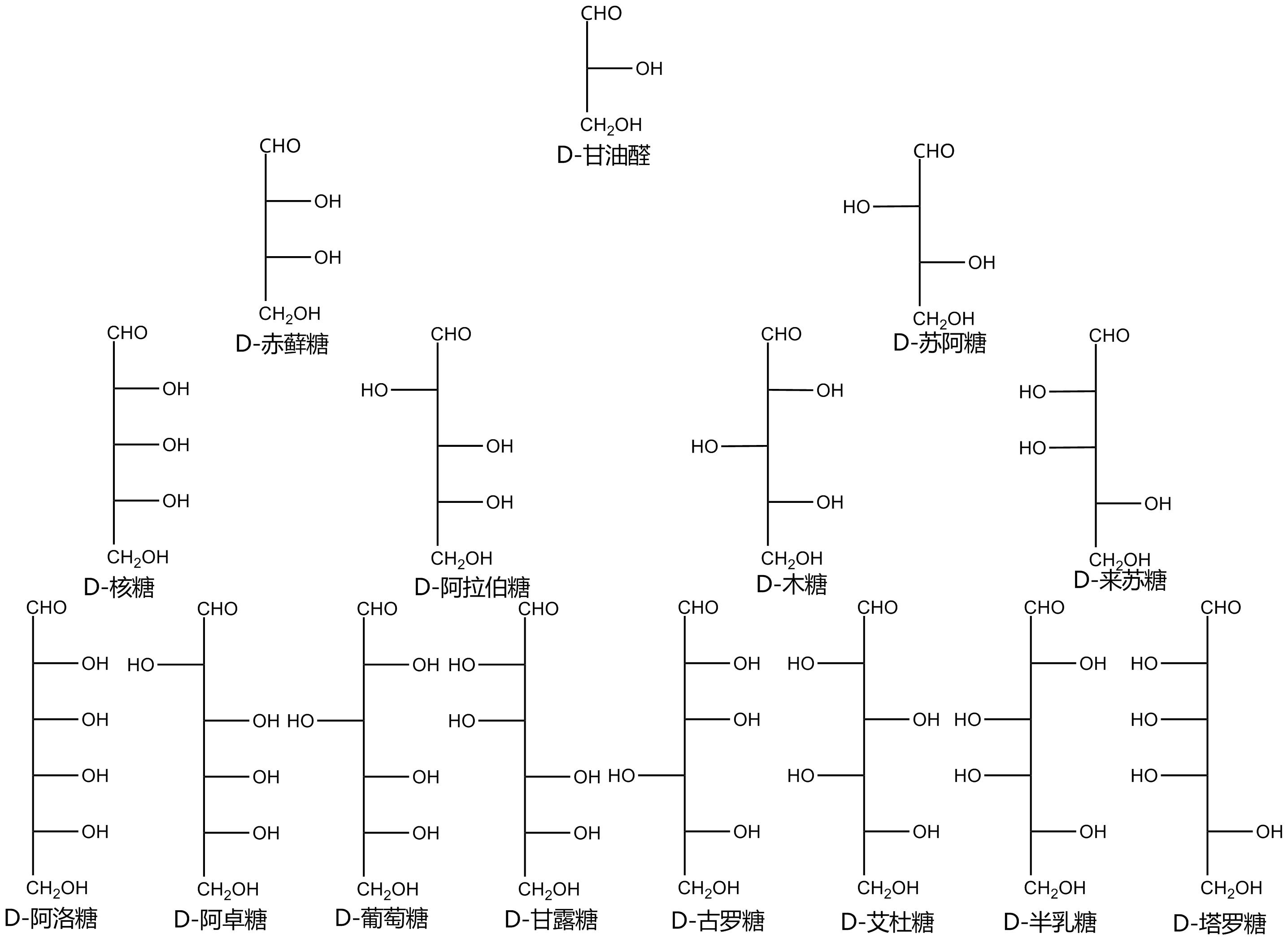 Glucose fischer projection