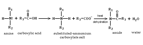 Amine reaction with carboxylic acids