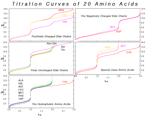 Composite of titration curves of twenty proteinogenic amino acids grouped by side chain category Amino Acid Titration Curves By Side Chain.png