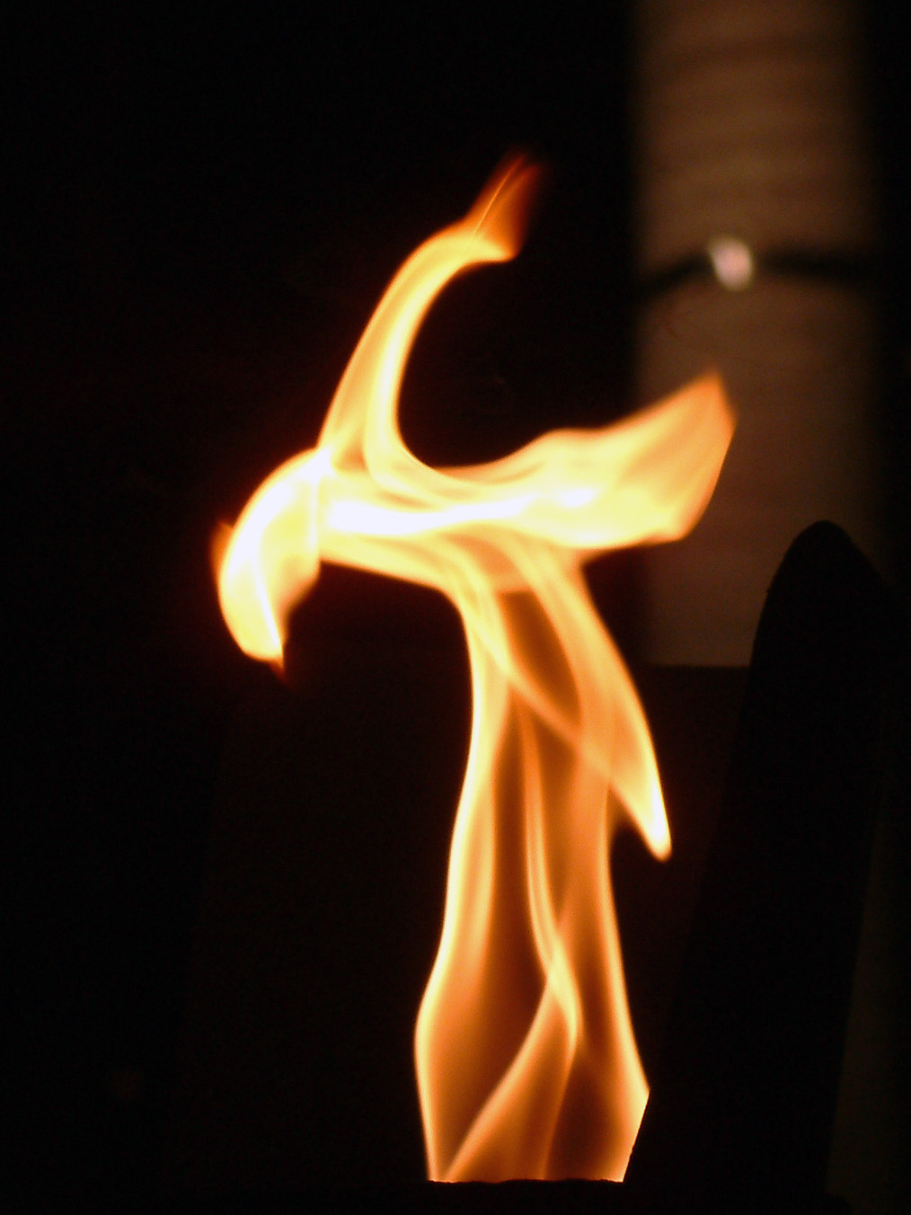 http://upload.wikimedia.org/wikipedia/commons/1/16/Australia_Cairns_Flame.jpg