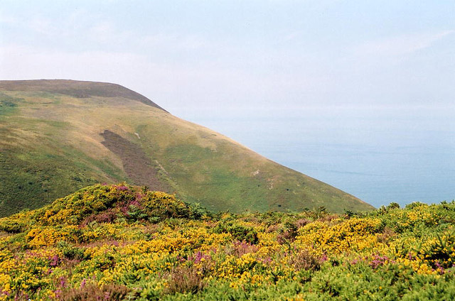 Combe Martin, Holdstone Down - geograph.org.uk - 72132
