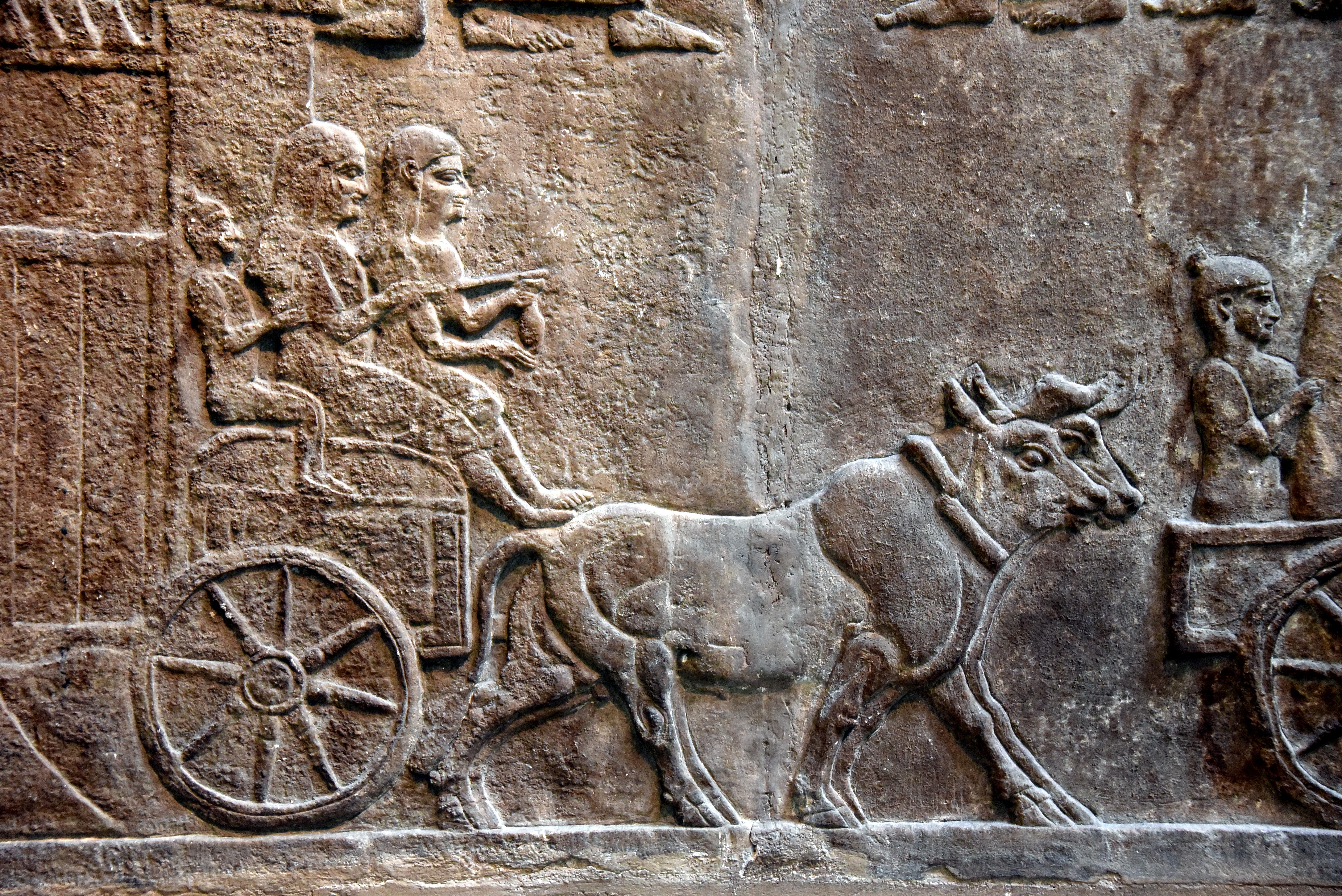 https://upload.wikimedia.org/wikipedia/commons/1/16/Detail%2C_deportation_of_a_city%27s_inhabitant_in_southern_Iraq._From_Nimrud%2C_Iraq%2C_c._728_BCE._British_Museum.jpg