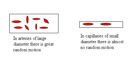 Diameter effect on blood P.jpg