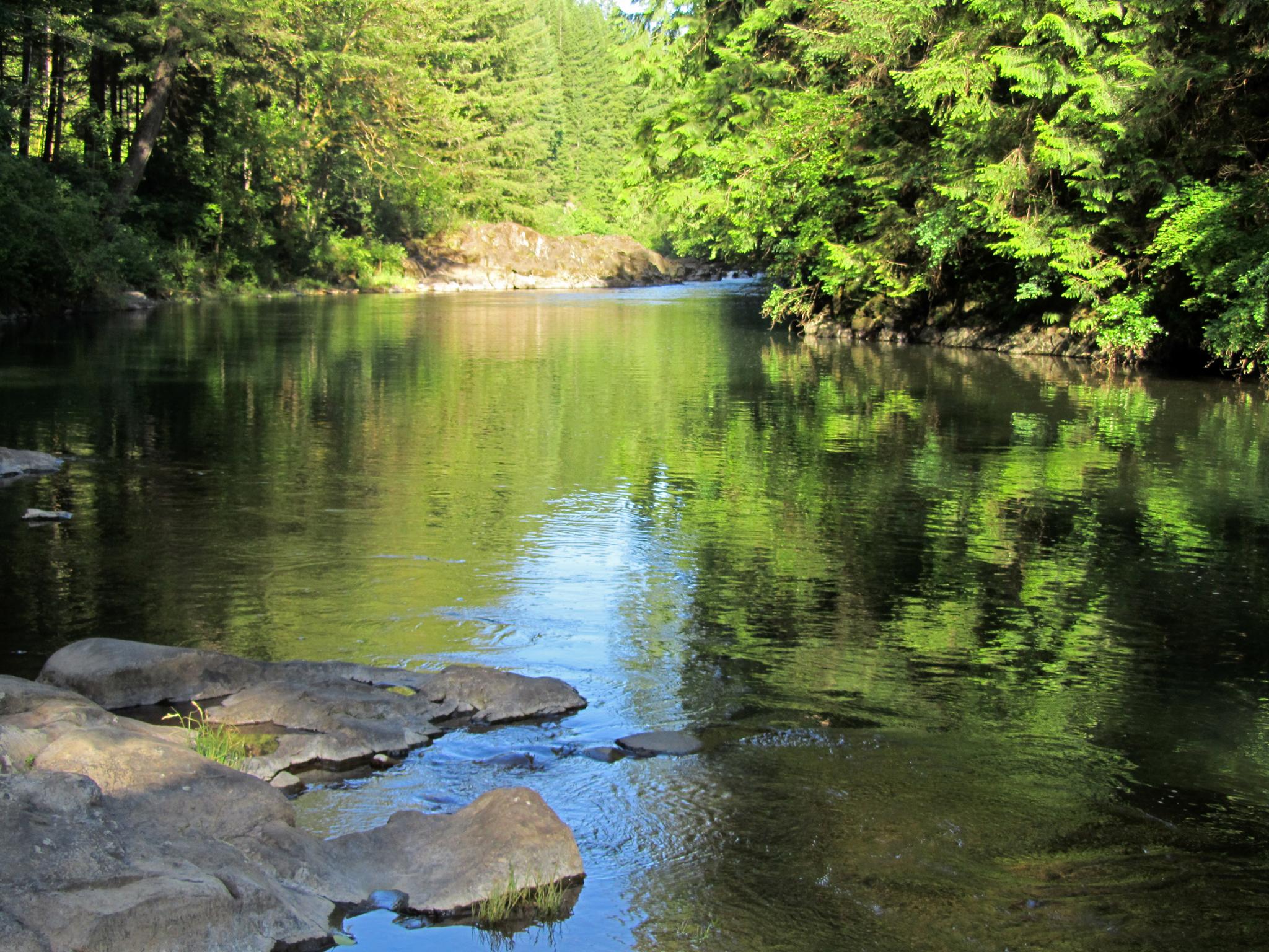 East Fork Lewis River at Moulton Falls Park in Washington 1.jpg