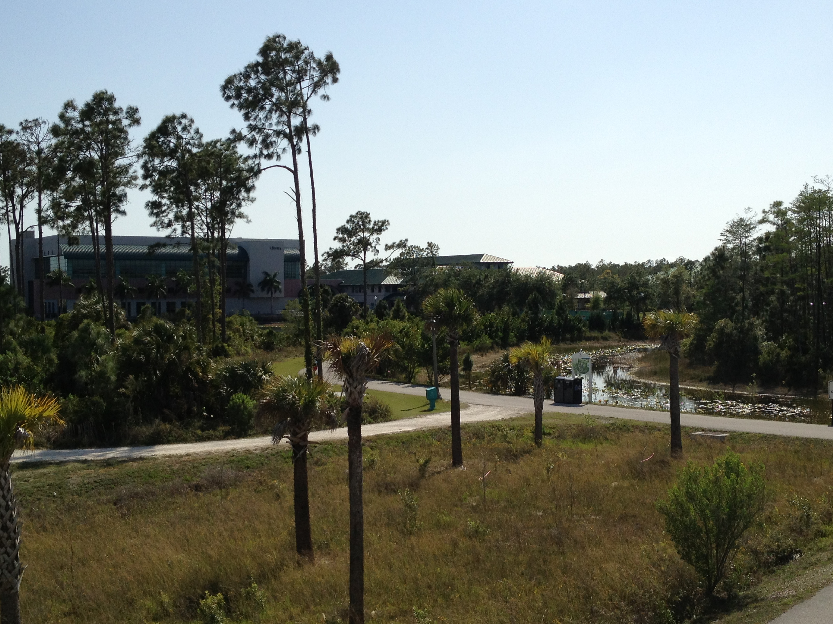 florida gulf coast university alumni