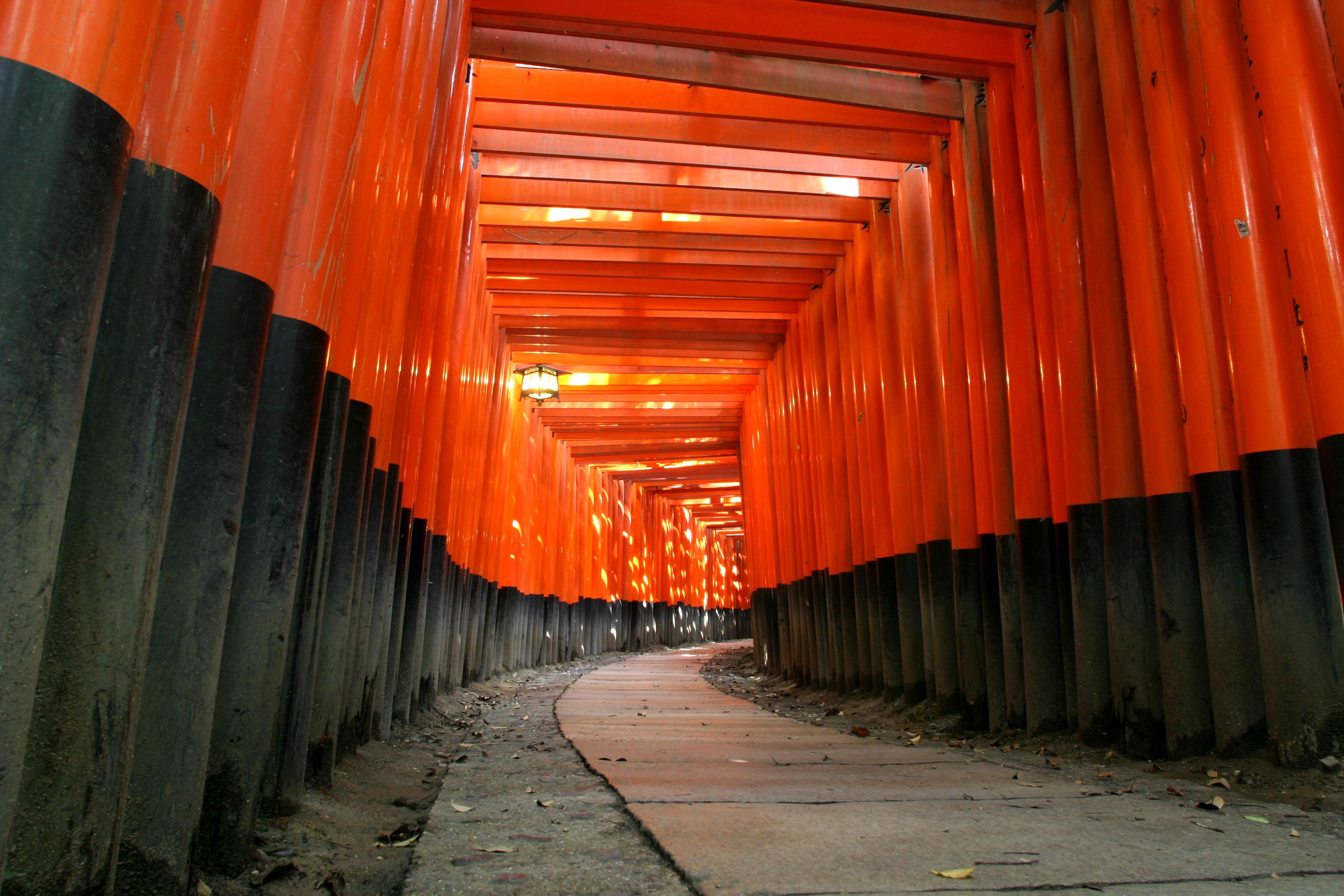 「京都 フリー」の画像検索結果