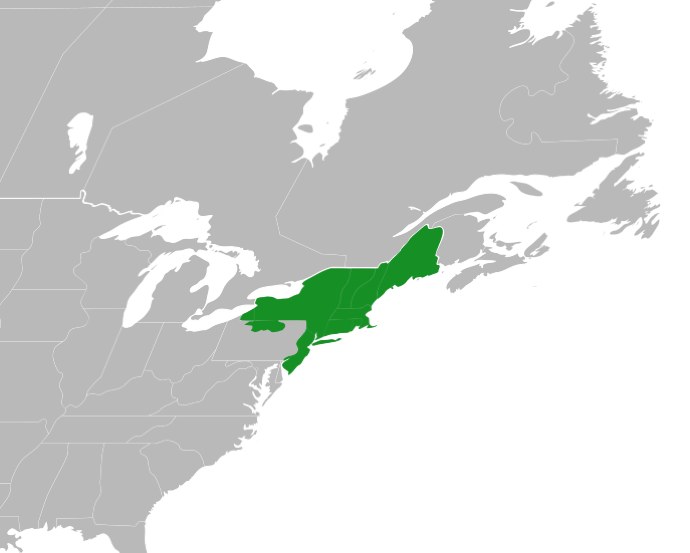 File:Map of New England (1960).png - Wikimedia Commons
