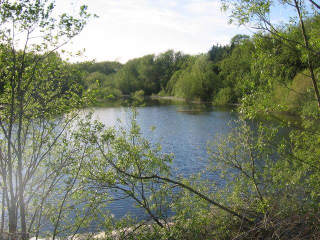 Ogston Reservoir more full 179865