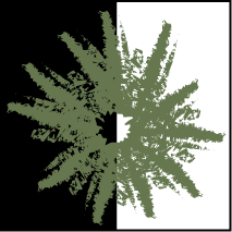 File:Olive spore print icon.png