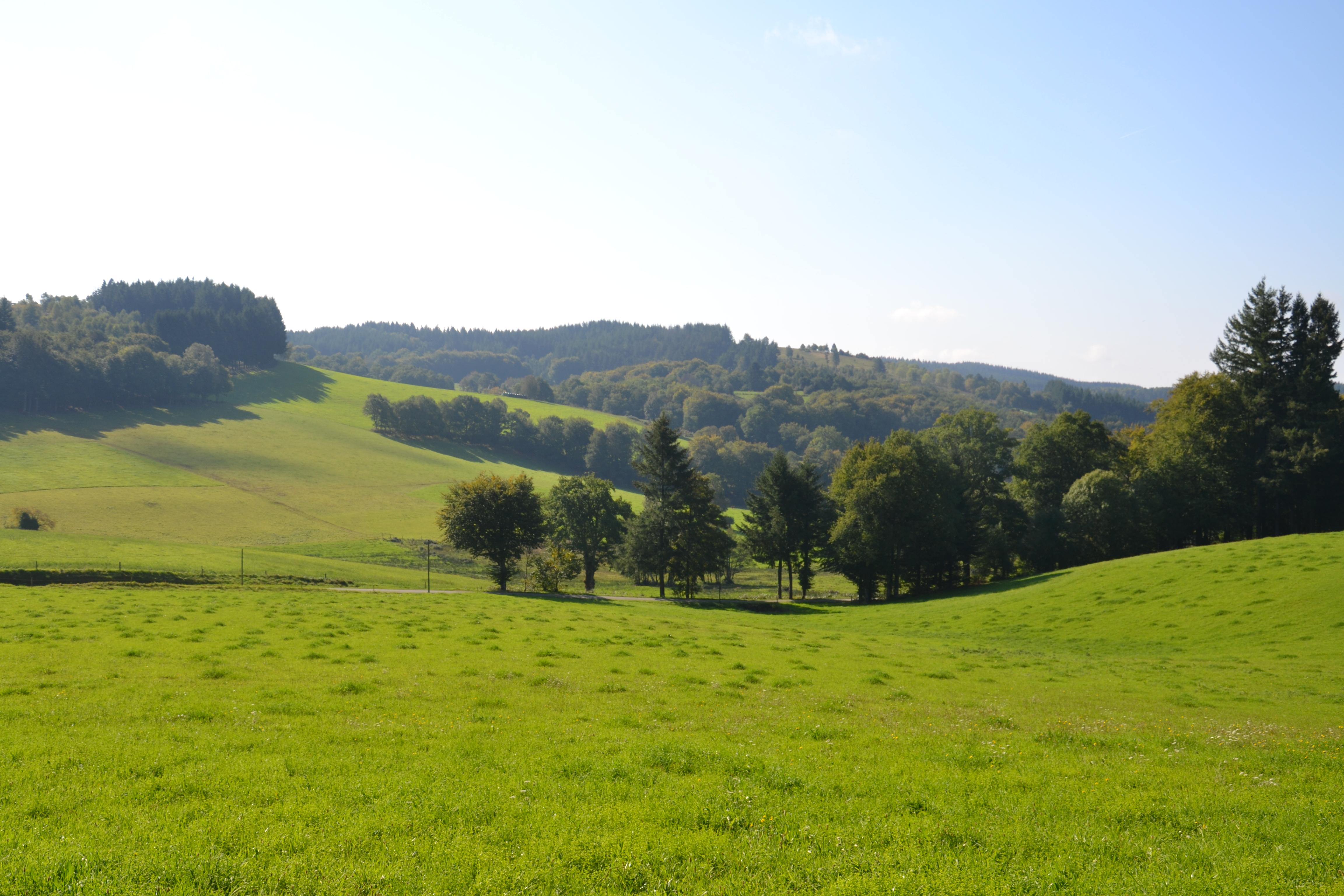Fichier paysage pr s de rempnat 2 jpg wikip dia for Paysage francais