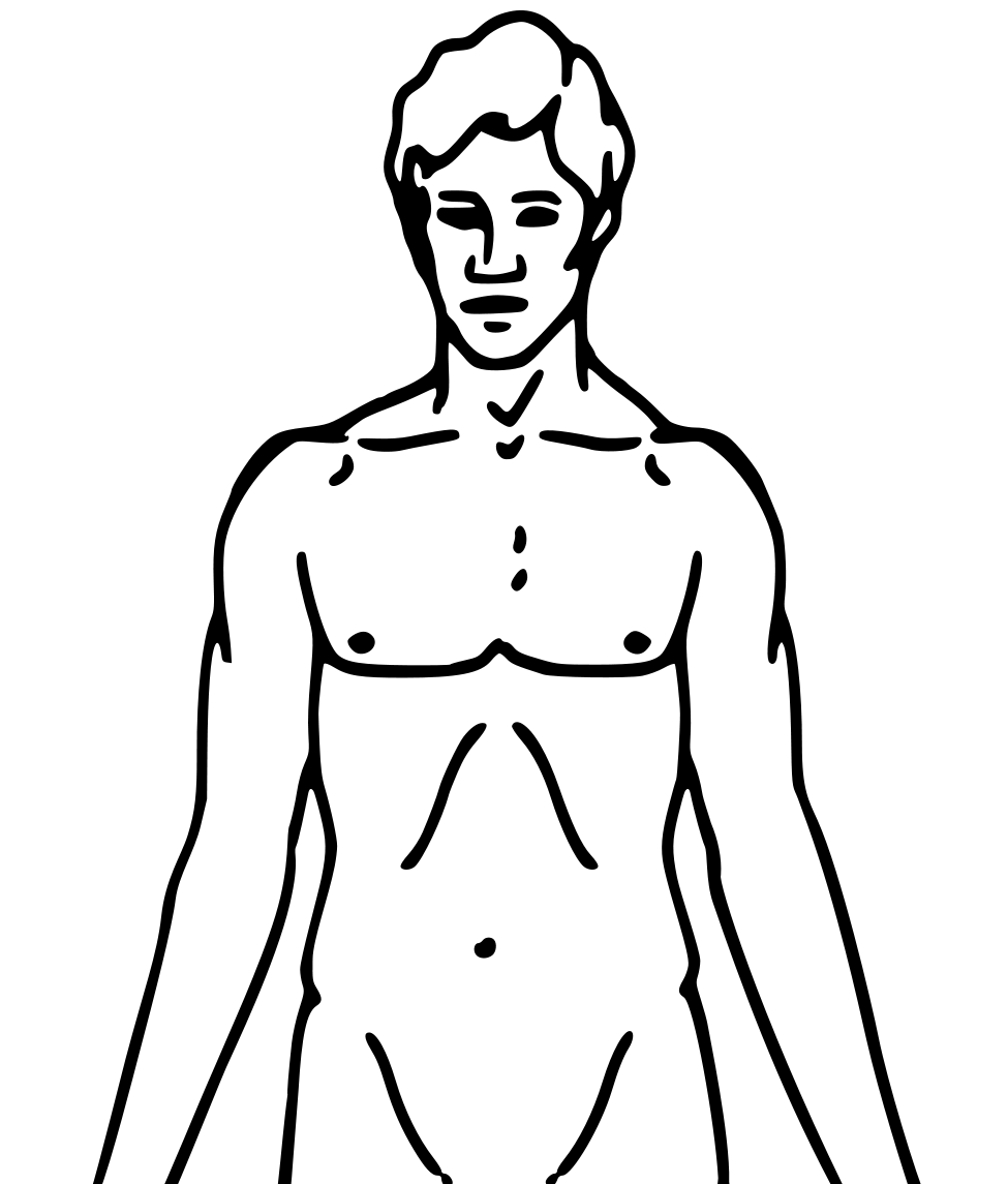 File:Pioneer plaque man upper body as diagram template (alternative).png