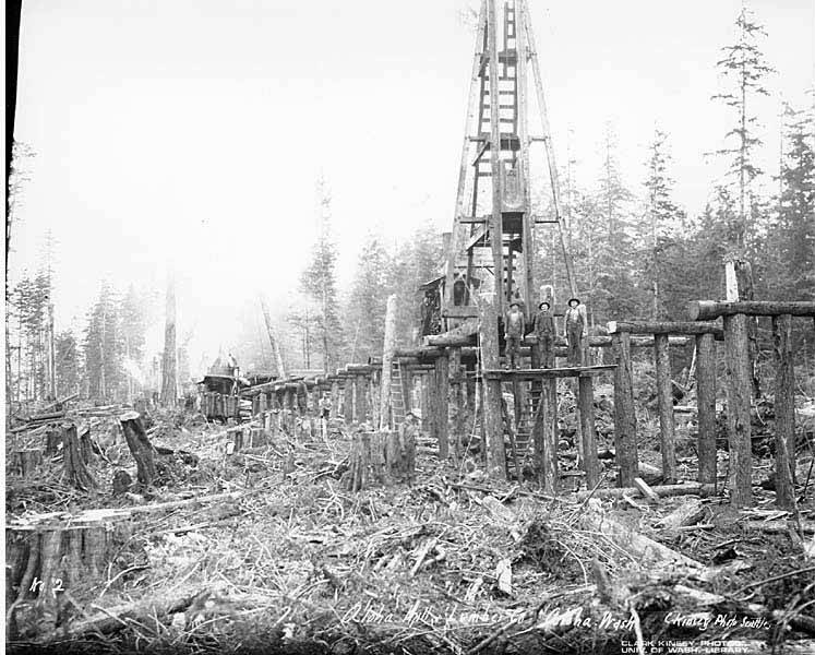 file railroad trestle under construction  aloha lumber