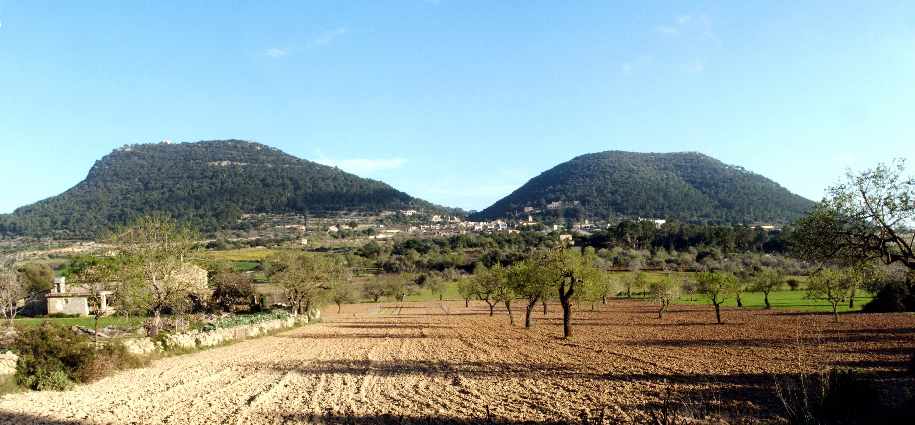 Puig de Randa, Algaida