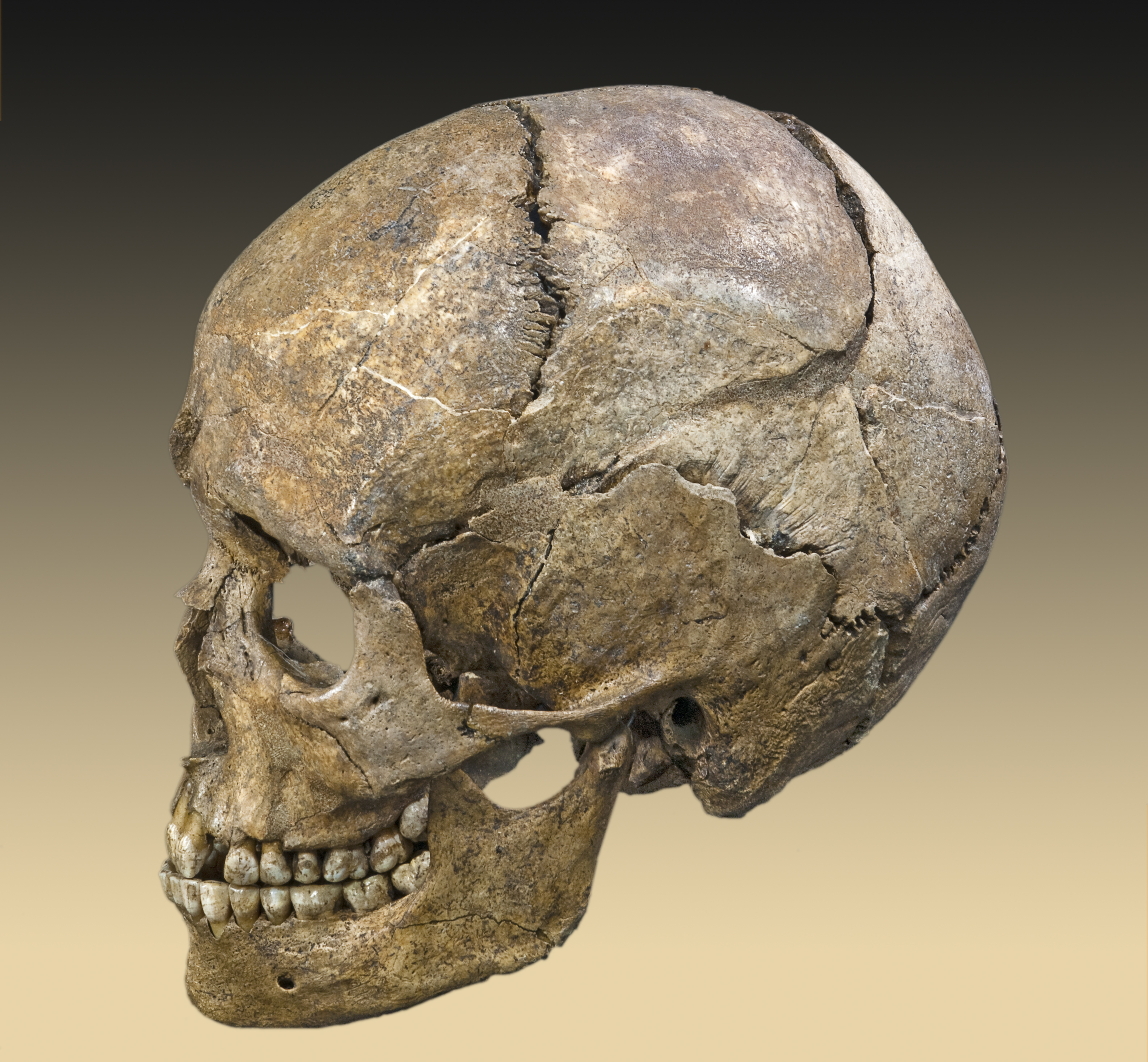 mesolithic religions In this lesson, you will explore the history of the mesolithic era, one of the greatest transitional periods in human history then, test your.