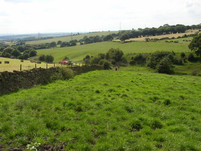 The Kirklees Way, Birkenshaw - geograph.org.uk - 516834