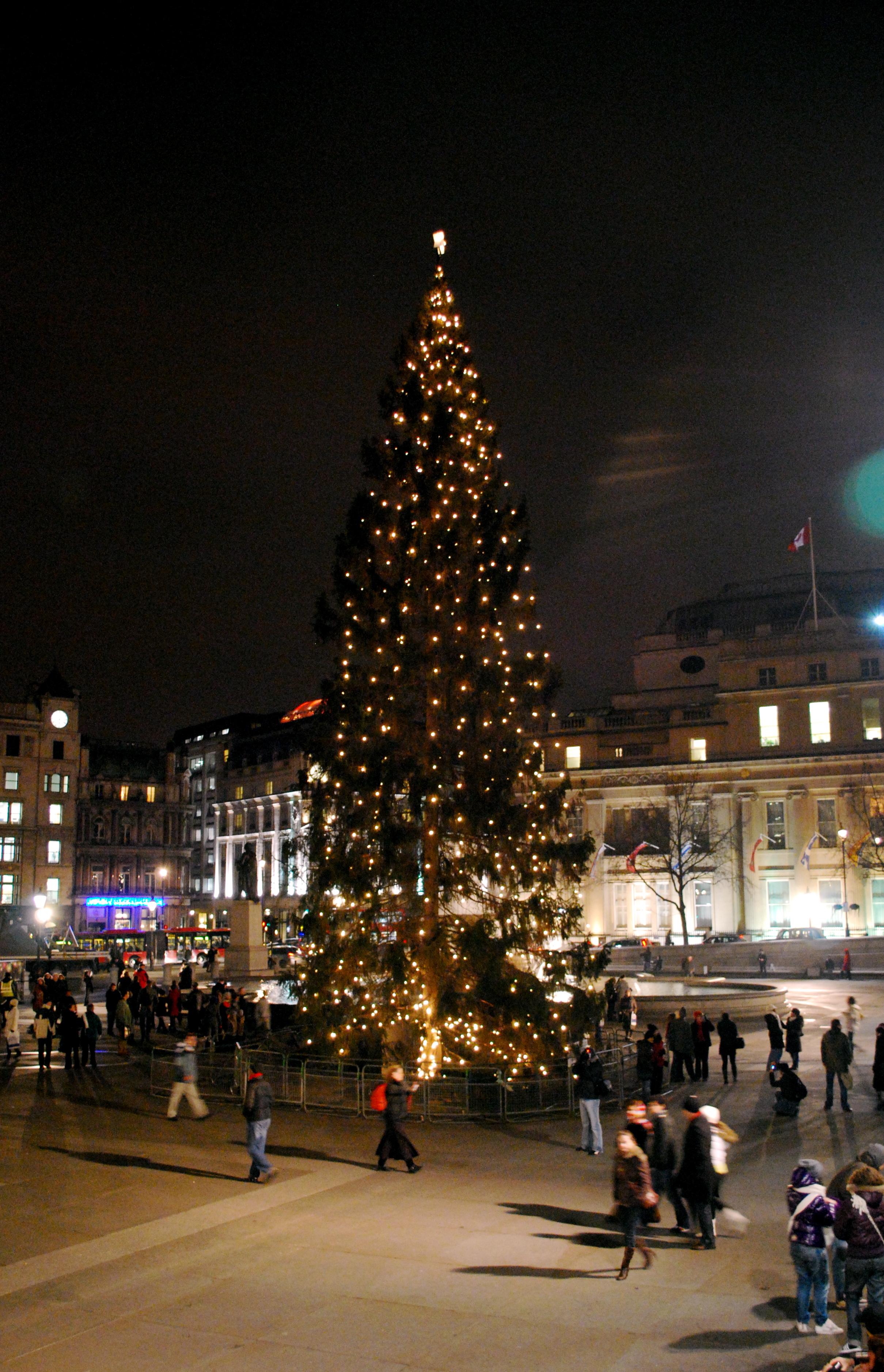 Norwegian Christmas Tree Trafalgar Square