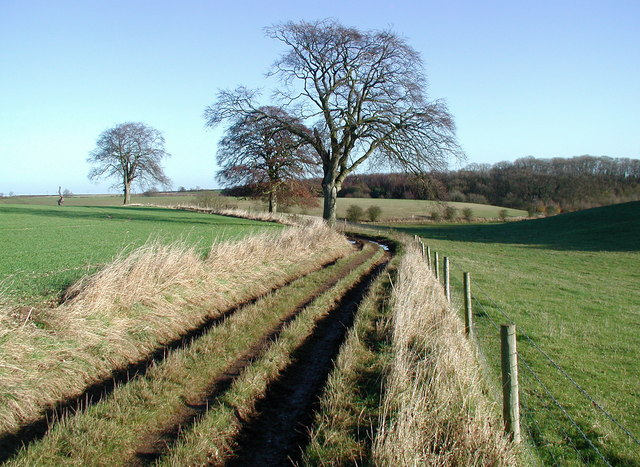 Turtle Hill, Wauldby - geograph.org.uk - 624329