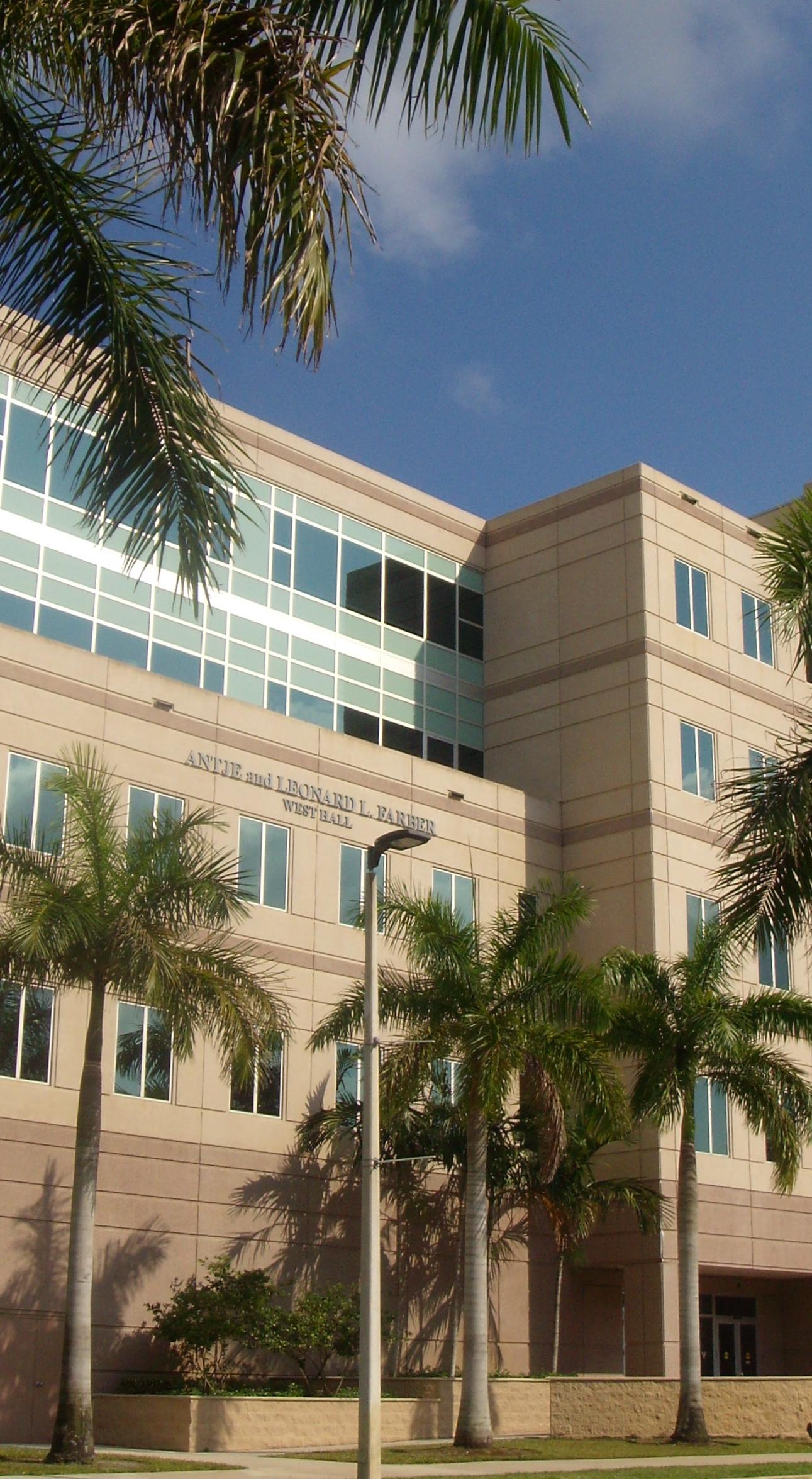 nova southeastern university dissertation database