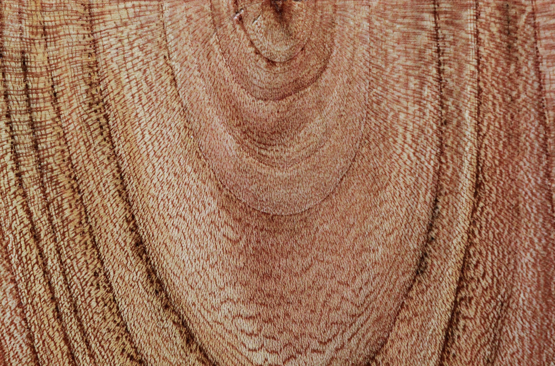 Wood Grain Ring Dark Souls