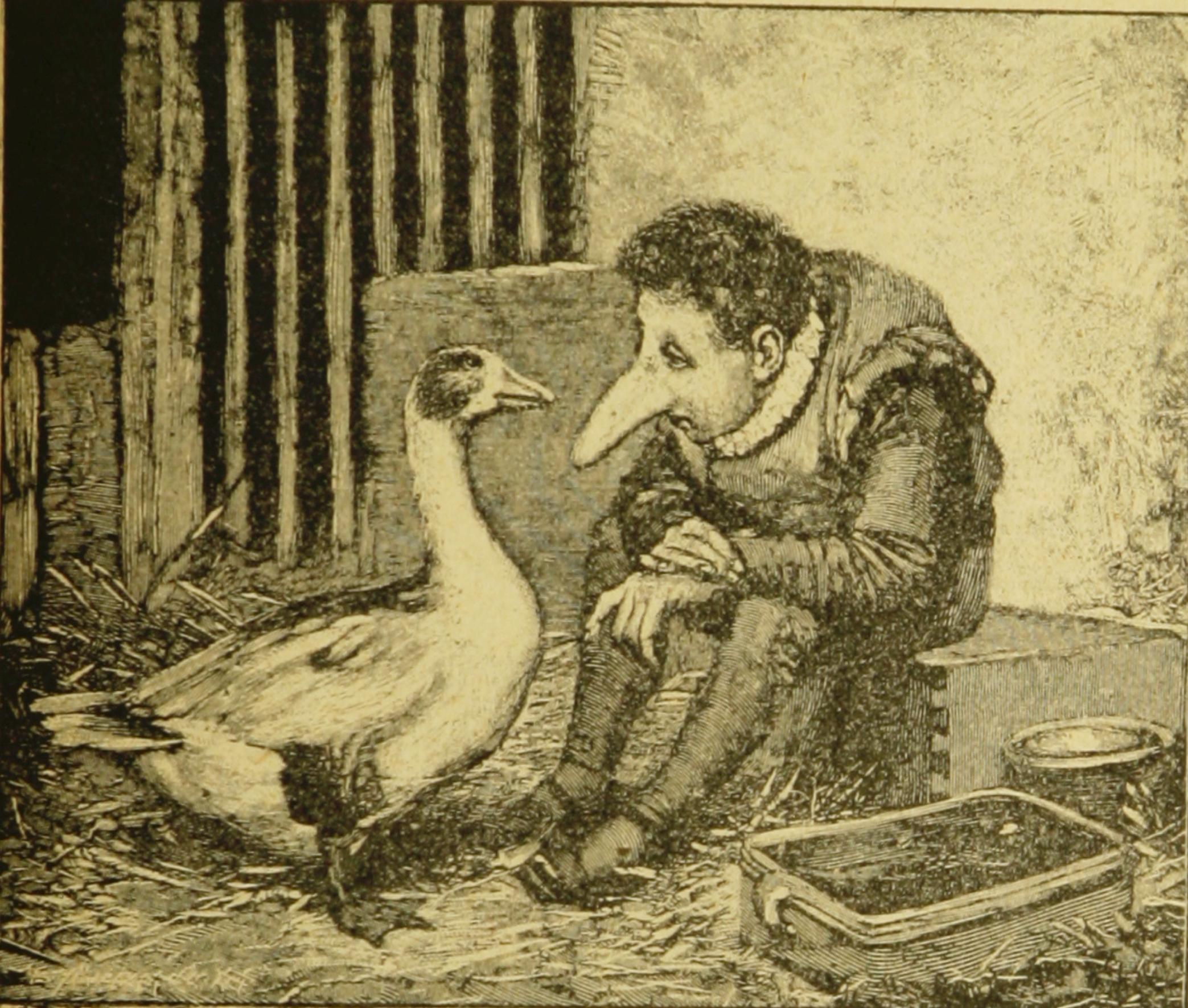 Обложка книги гауф карлик нос краткое содержание