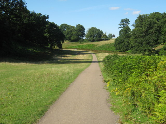 A path in Knole Park - geograph.org.uk - 1451432