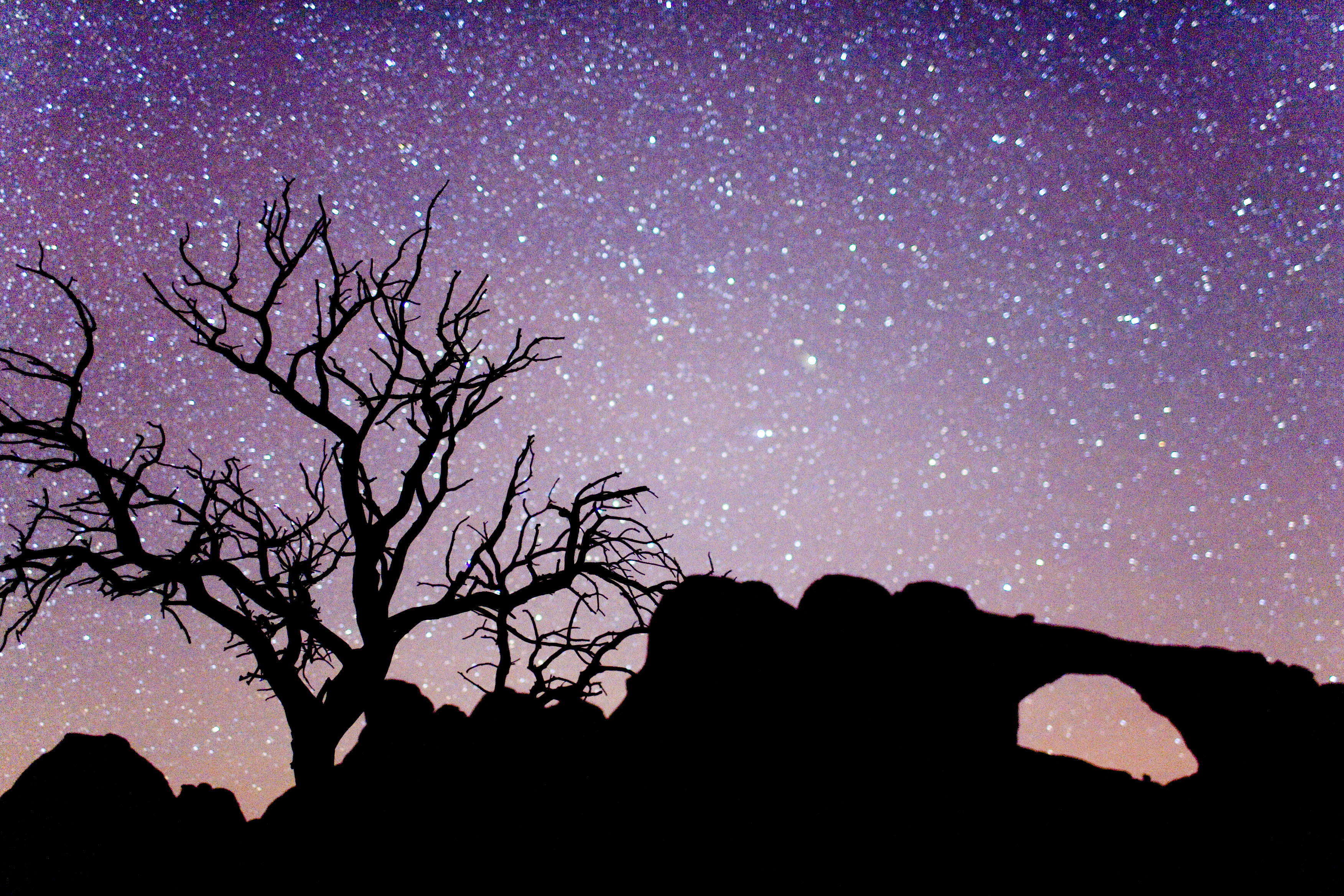 File:Arches National Park Night.jpg - Wikimedia Commons Night