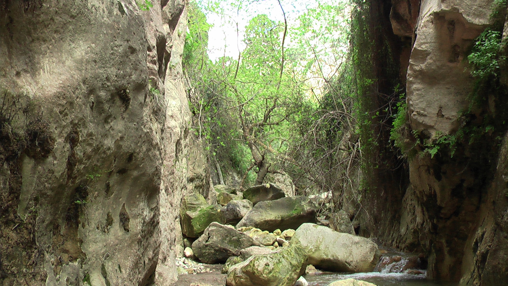 Avakas Gorge - Photo by Pan Narrans