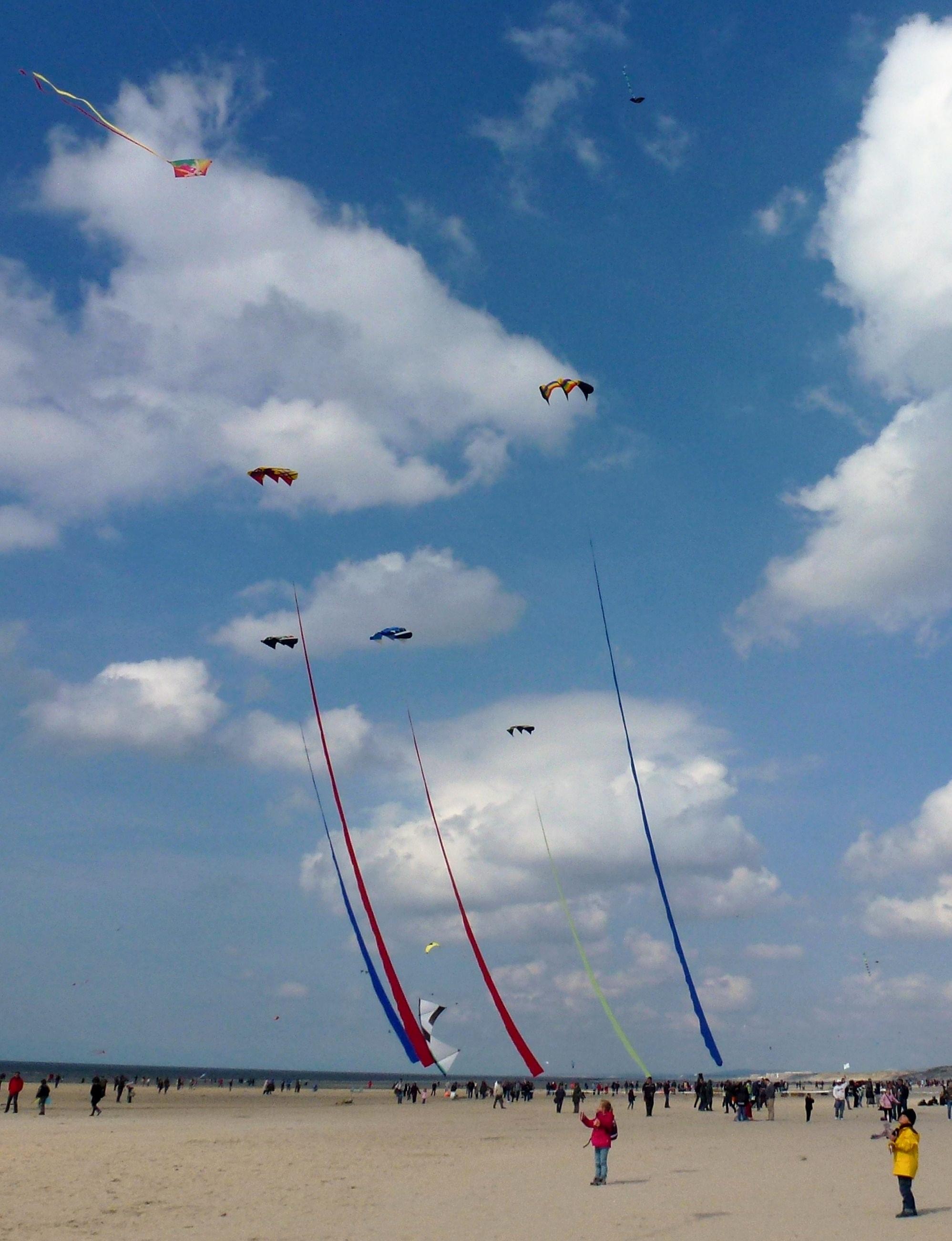 Les 33e rencontres internationales de cerfs-volants de Berck-sur-mer.